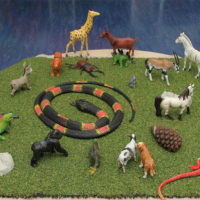 variety of animal toys for children